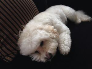 Kiki a bit depressed