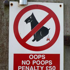 oops no poops