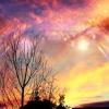 sky-heaven