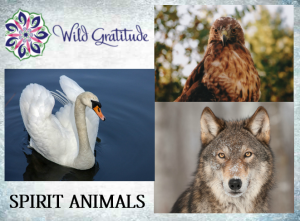 spirit animals and shamanism
